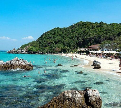 Dao Coral Thai Lan