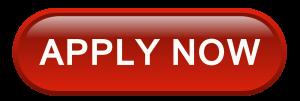apply business visa now
