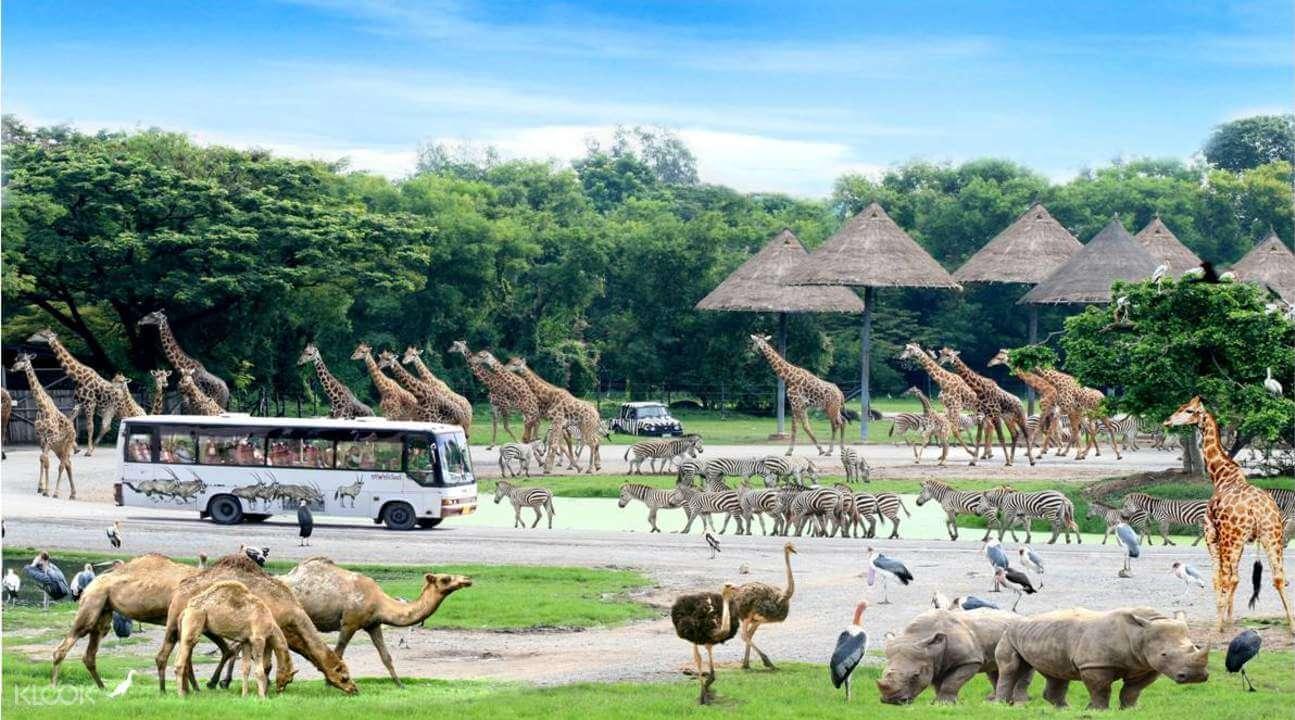 Có nên cho trẻ em đi du lịch Thái Lan