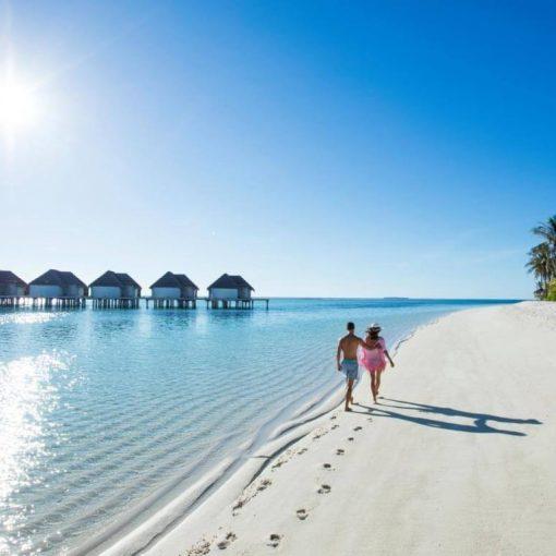 Kinh nghiệm du lịch Maldives: Nên ăn gì và mua gì tại thiên đường biển?