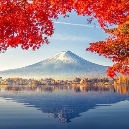 Nhận học bổng hấp dẫn khi du học điều dưỡng Nhật Bản