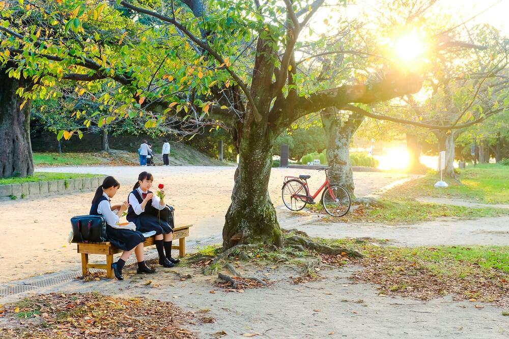 Tổng hợp kinh nghiệm du học Nhật Bản tự túc dành cho bạn