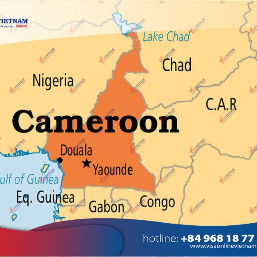 How to get Vietnam visa on arrival in Cameroon?