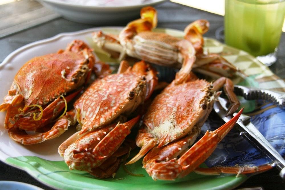 [Ăn gì ở Phú Quốc] Top những món ăn mãi không quên
